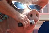 Pig Sing.png