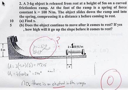 Elephantal Physics