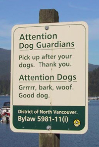 Attention dog guardians