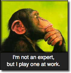 Not an expert