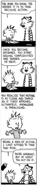 Calvin  hobbes ignorant but act on it copy