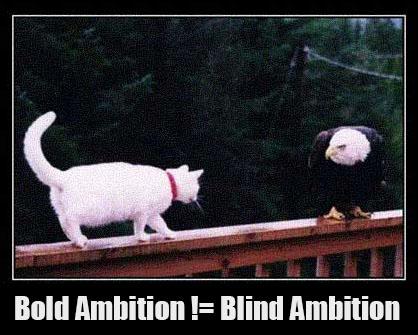 Bold ambition