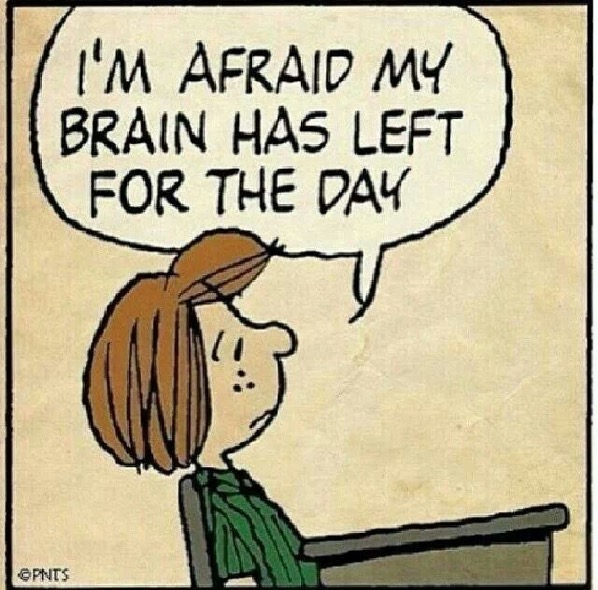 Brain has left peanuts